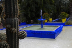 Marrakesh-JardineMajorelle2