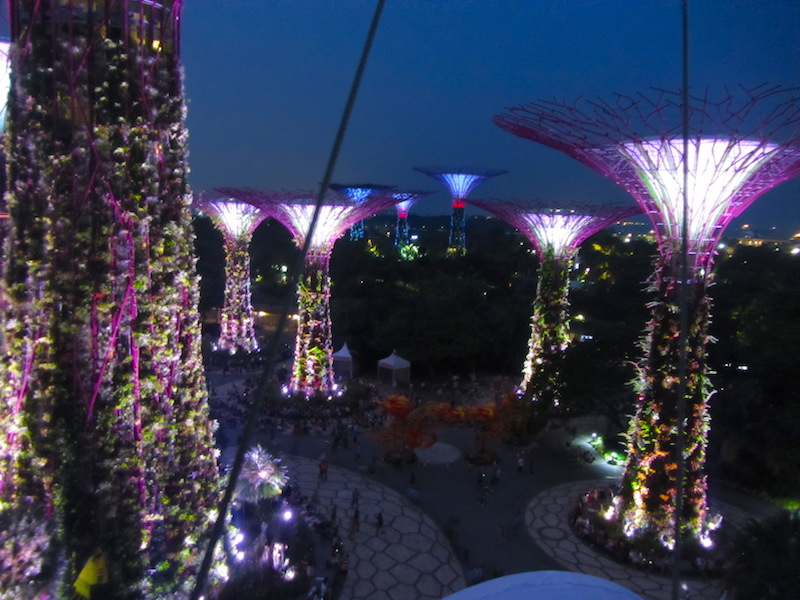 Singapore-Gardens-by-the-bay-4