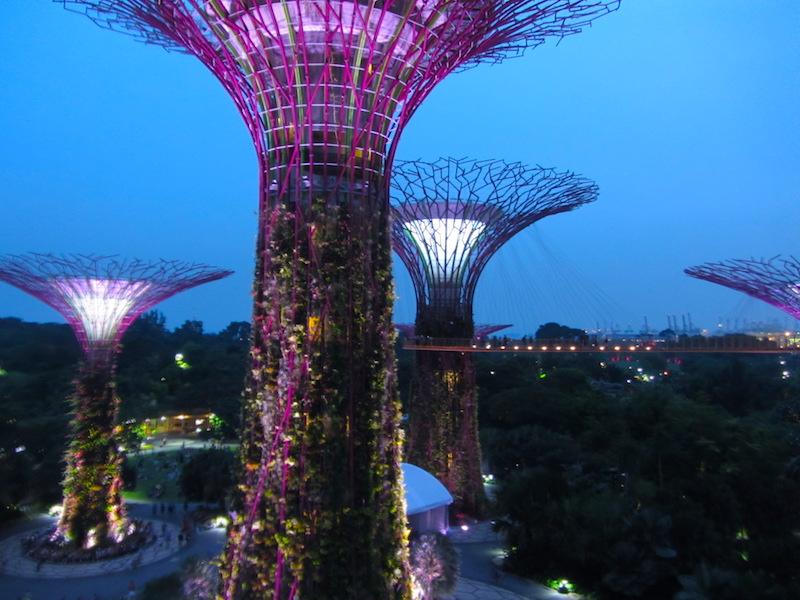 Singapore-supertree-gloves
