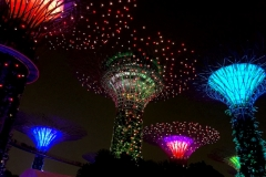 Singapore-supertree-gloves-notturno
