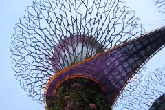 Singapore-supertree-gloves-passerella