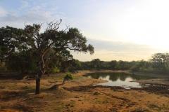 Sri-lanka-Yala-National-park-paesaggio